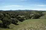 Canelo Hills (2).jpg by USDA Forest Service