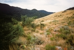 Buckhorn Mountain (3).jpg by USDA Forest Service