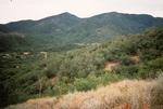 Buckhorn Mountain (1).jpg by USDA Forest Service