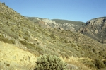 Parker Creek (9).JPG