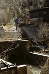 Parker Creek (7).JPG
