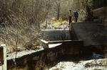 Parker Creek (5).JPG