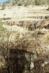 Parker Creek (10).JPG