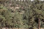 Little Water Canyon (30).JPG