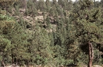 Little Water Canyon (29).JPG