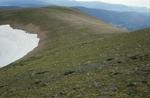 Little Costilla Peak (3).JPG