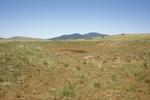 Garland Prairie (9).JPG