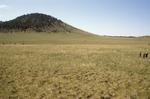 Garland Prairie (8).JPG