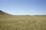 Garland Prairie (7).JPG