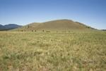 Garland Prairie (3).JPG