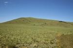 Garland Prairie (1).JPG