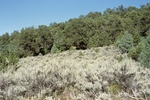 Comanche Canyon (6).JPG