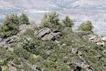 Butterfly Peak (6).JPG by USDA Forest Service