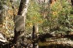 Turkey Creek Photos (3)