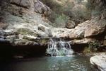 Turkey Creek Photos (5)