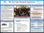 My First Year Research Experience
