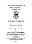 The saline springs of the Rio Salado, Sandoval County, New Mexico. by John D. Clark